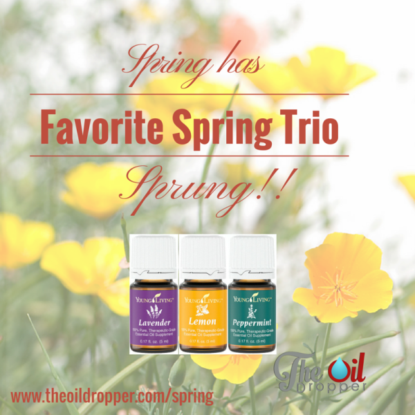 favorite-spring-essential-oil-combo-llp