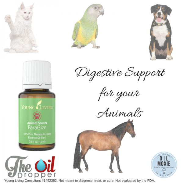 ParaGize Essential Oil for Animals