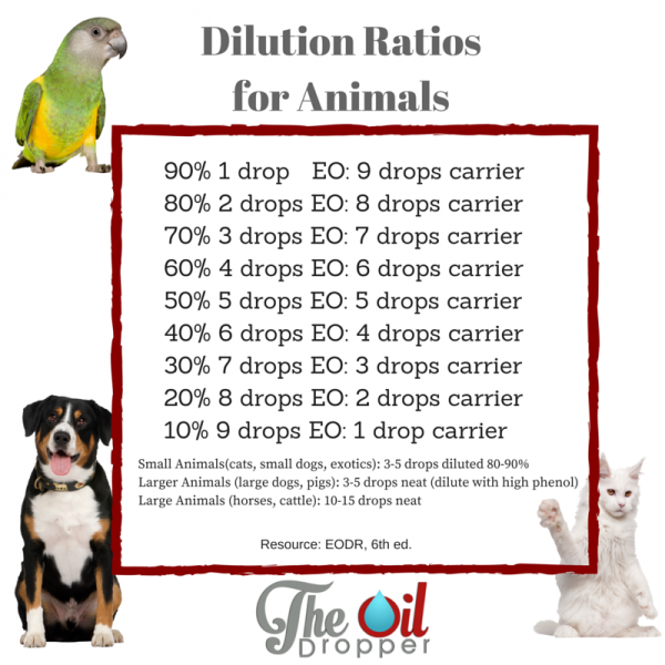 Animal essential oil dilution ratios
