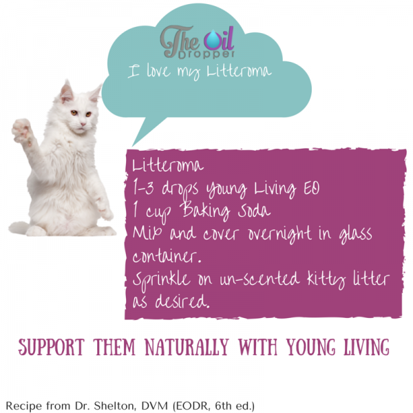 EO Litteroma for cats
