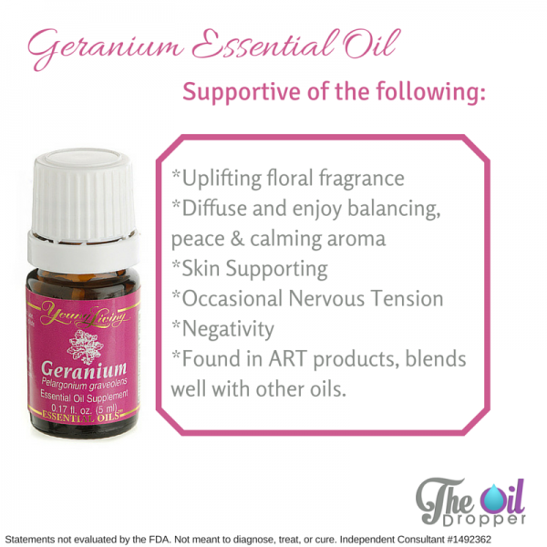 Young living geranium essential oil 15ml 11street malaysia massage body essential oil - New uses for home products ...