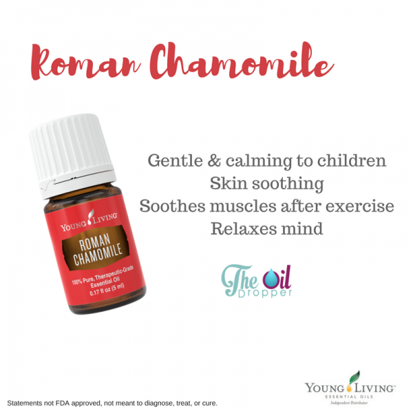 roman-chamomile-the-oil-dropper