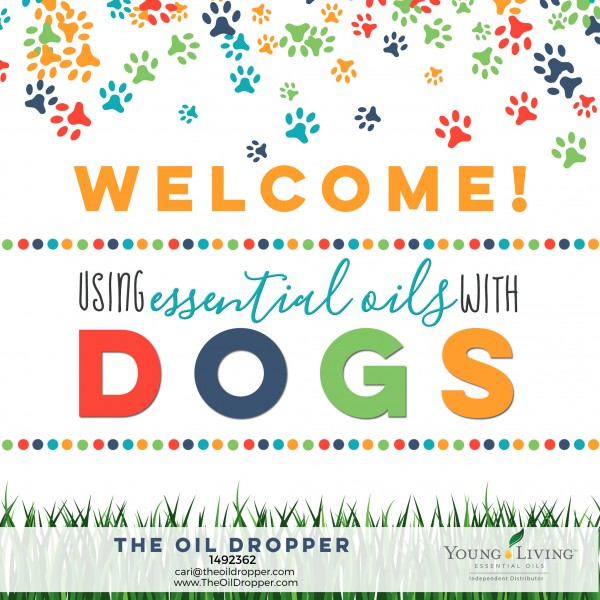 essential-oils-dogs-welcome
