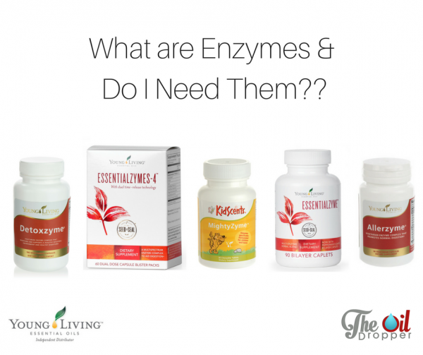 what-are-enzymes-young-living-the-oil-dropper