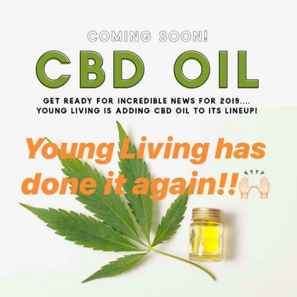 CBD-oil-coming-to-Young-Living