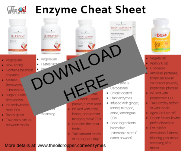 Glycolysis Steps MCAT Study Guide Cheat Sheet #MCAT # ... |Enzymes Cheat Sheet