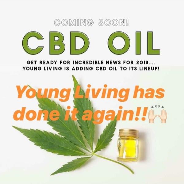 L'huile de CBD à venir chez les jeunes